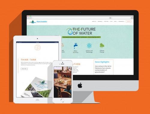 Hisaar Foundation – Website